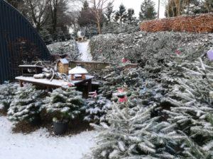 skovdal grønt julestemning